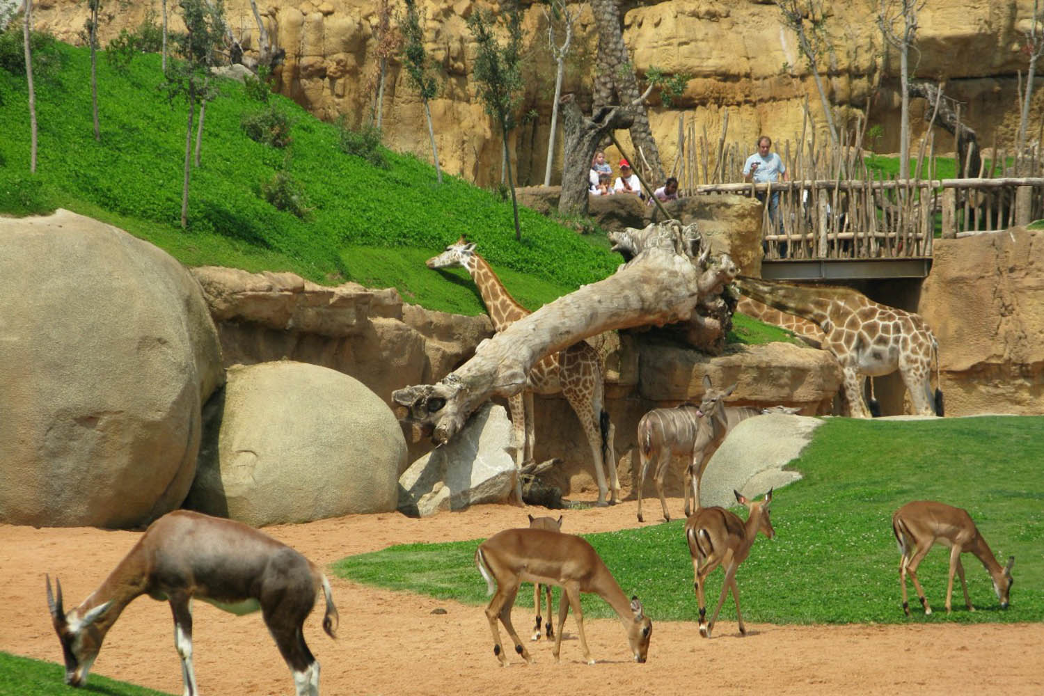 National Children's Park and Zoo
